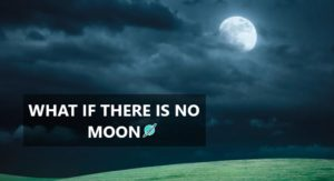 no moon feature image
