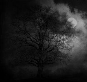 Prepare for Darker Nights