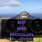 5 Best 8x42 Binoculars in 2021 [For Birding & Hunting]
