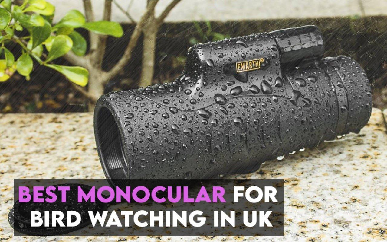 Best Monocular for Bird Watching UK