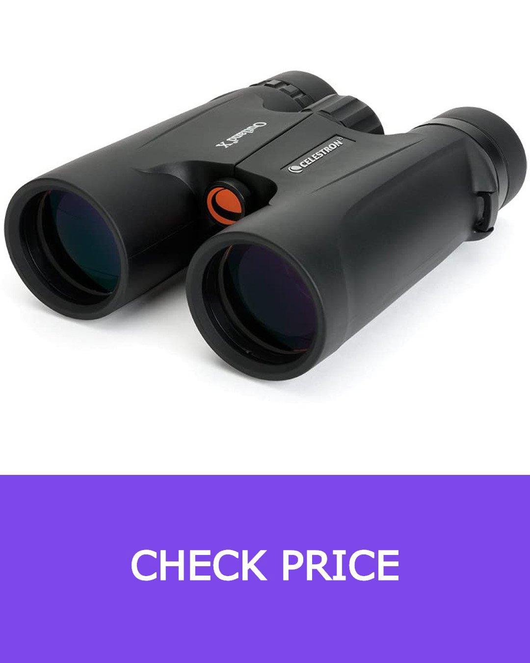 Celestron 71347 binoculars
